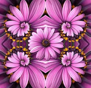 Purple Flower Droste Collage