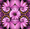 Purple Flower Droste Collage